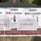 Roma: Marino fa rimuovere solo i manifesti scomodi al Pd