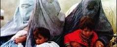 Primavera islamica, Libia: torna la poligamia vietata da Gheddafi